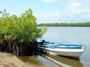 Aire Marine protégée communautaire du Bamboung