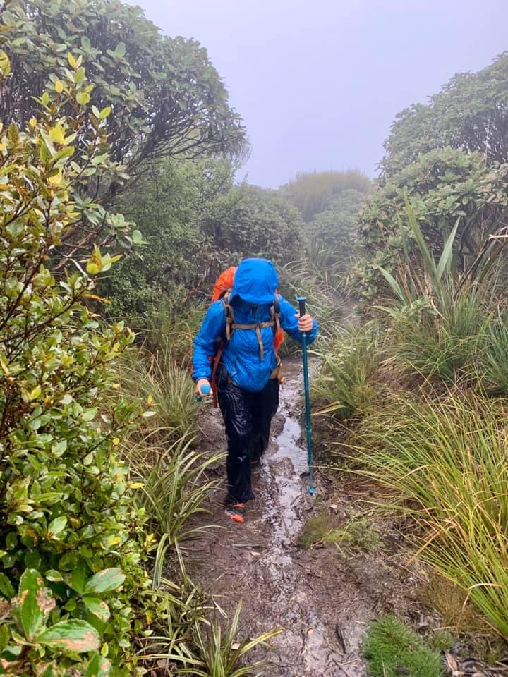Te Araroa Nouvelle-Zélande